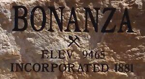 Bonanza Incorporated 1881